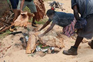 Miwatj Health Calls for Action to Address Food Insecurity in East Arnhem Land