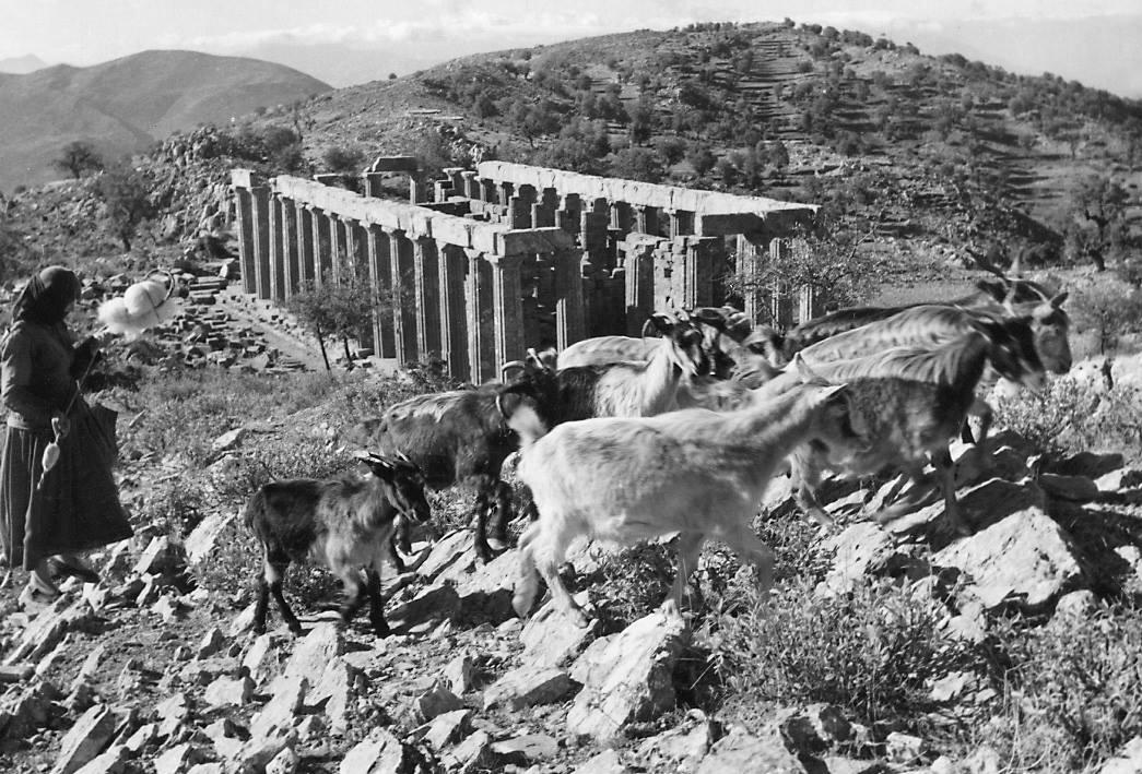 """Ο """"δεύτερος Παρθενώνας"""" που κατέληξε στο Βρετανικό Μουσείο αγοράστηκε σε δημοπρασία επί τουρκοκρατίας. Ποιοι λεηλάτησαν τον αρχαίο ναό του Επικούριου Απόλλωνα"""
