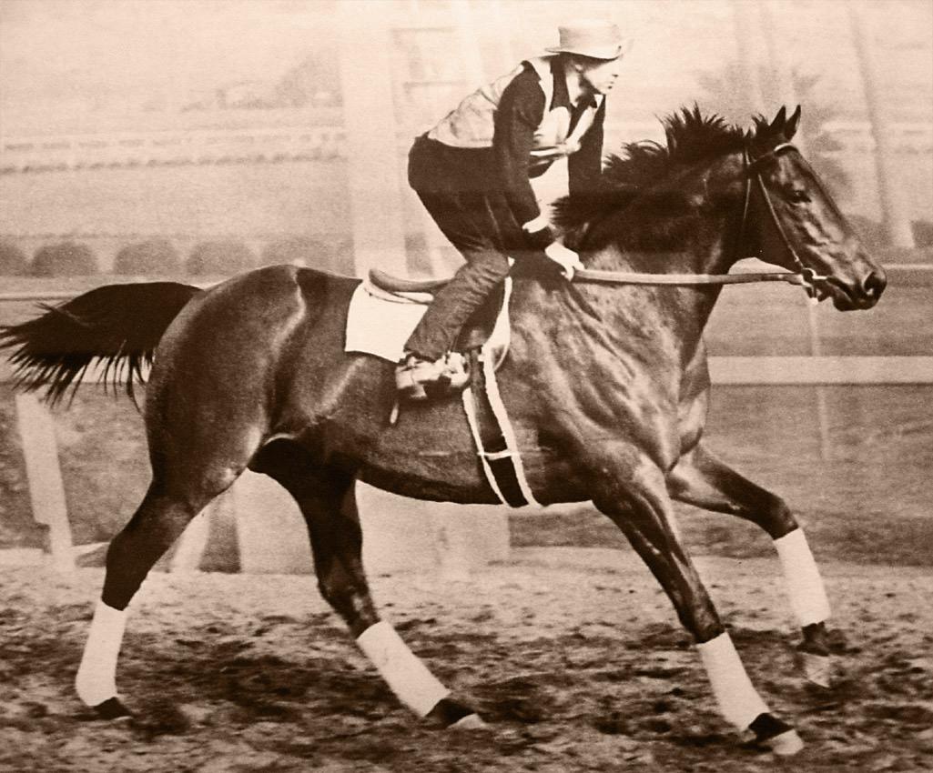 """Το άλογο που έγινε θρύλος στις ιπποδρομίες ήταν κοντό και τεμπέλικο. Έκανε ζάμπλουτους τους ιδιοκτήτες του και κέρδισε τον """"αγώνα του αιώνα"""" τον οποίο άκουσαν 40 εκ. άνθρωποι"""
