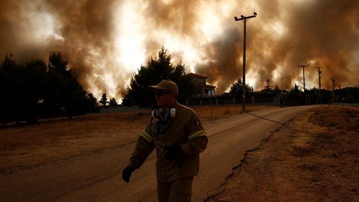 Η αλήθεια για τις πυρκαγιές – Το προφητικό άρθρο του καθηγητή Νίκου Μάργαρη για τα δάση – γηροκομεία δέντρων