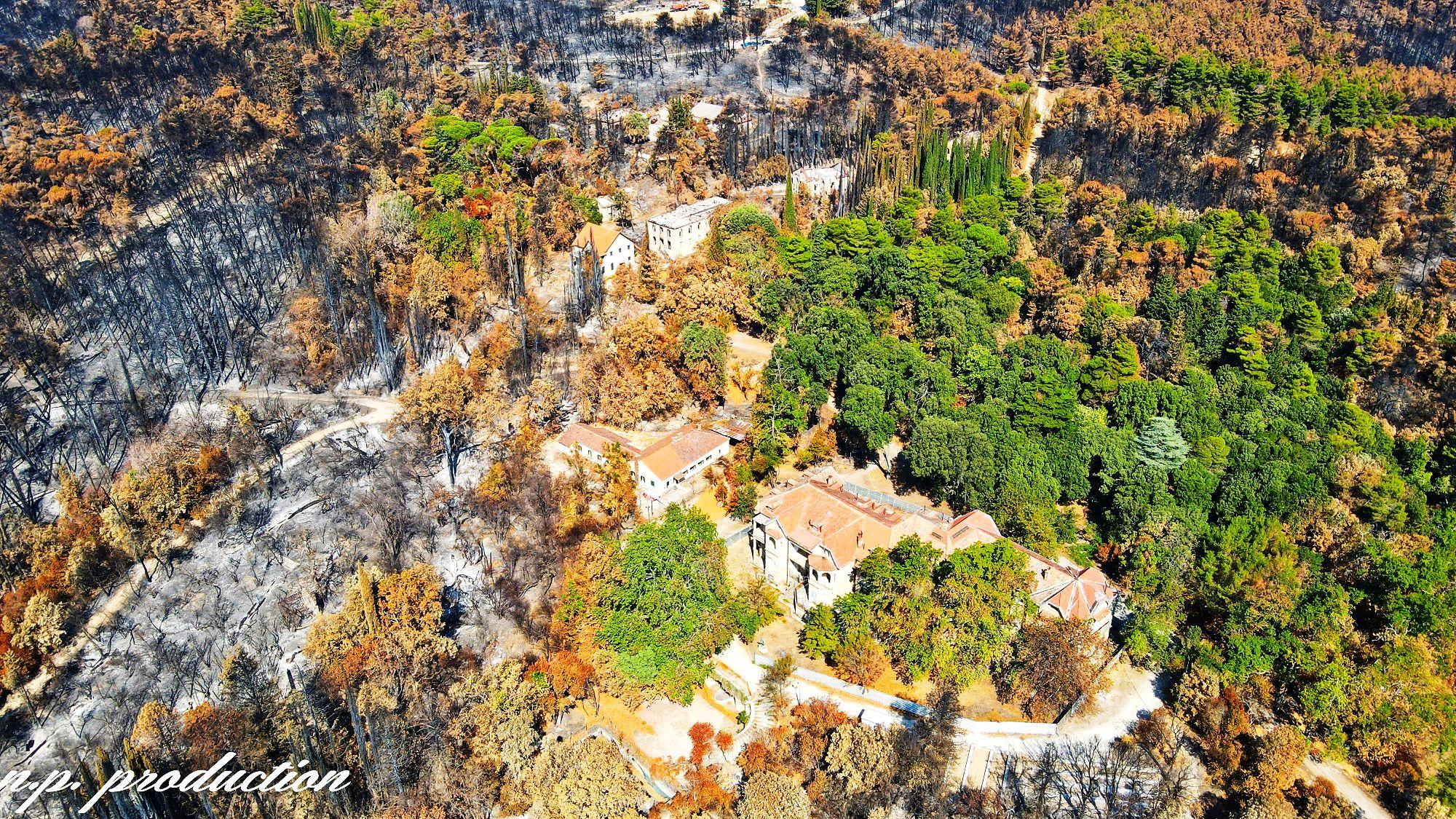 Το Τατόι μετά την καταστροφή. Δείτε συγκριτικές εικόνες από ψηλά και τι άλλαξε στο πρώην βασιλικό κτήμα (drone)