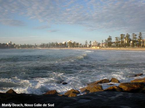 plajele australiei