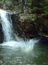 cea mai buna apa