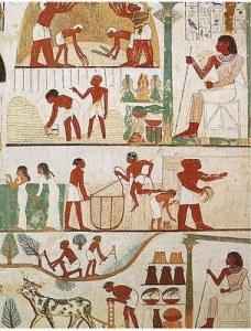 egiptenii antici , o populatie hamito-semitica