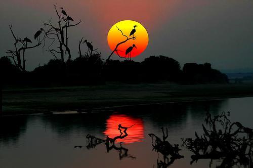 peisaj din Zambia