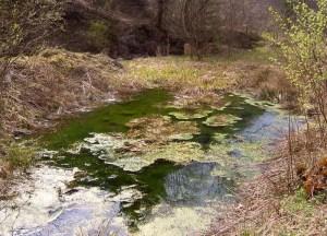 locuri misterioase din Romania (2)