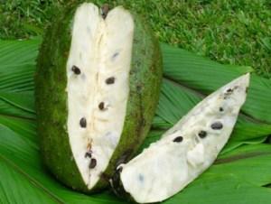 graviola ,fructul care ar putea revolutiona tratamentul cancerului