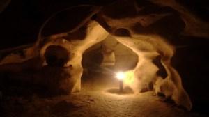 pesterile gemene din Israel