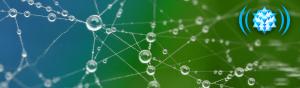 contributing-member-dewdrop-network
