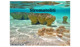 stromatolitii