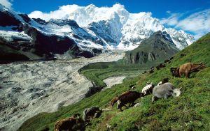 tibet-acoperisul-lumii-2