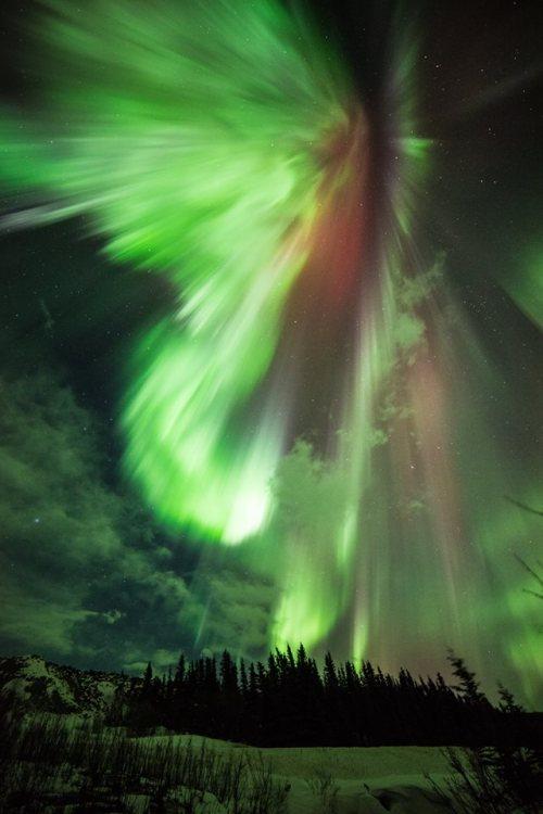 St. Pat's Aurora Alaska Sebastian Saarloos