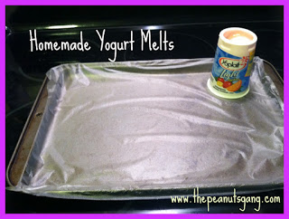 Homemade Yogurt Melts