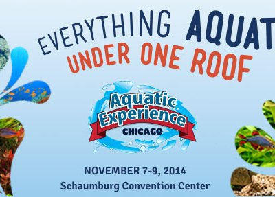 Aquatic Experience – Chicago {Giveaway}