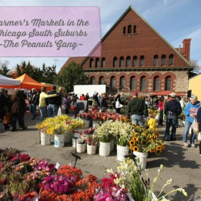 Support Farm Families through Farmers' Markets