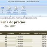 Microsoft Excel Viewer 1.0