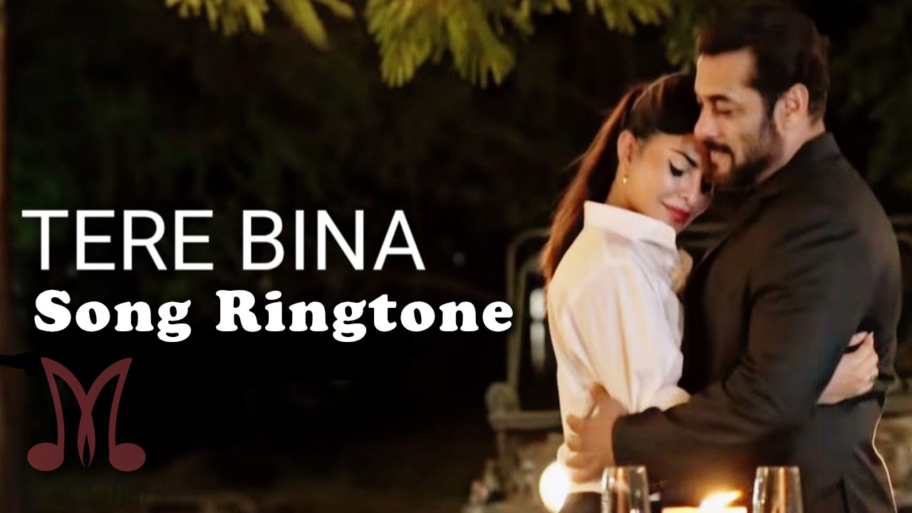 Tere Bina Mp3 Song Ringtone By Salman Khan Free Download for Mobile Phones