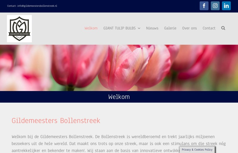 Website Gildemeesters Bollenstreek.nl
