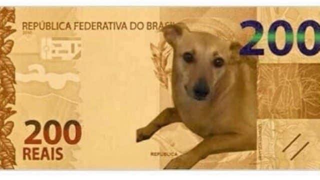 Nota de R$ 200 vira mesmes na internet