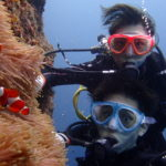 宮古島の本ドロップで体験ダイビング