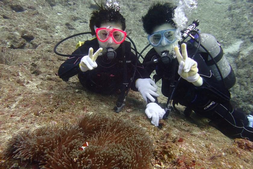 宮古島体験ダイビング カクレクマノミ