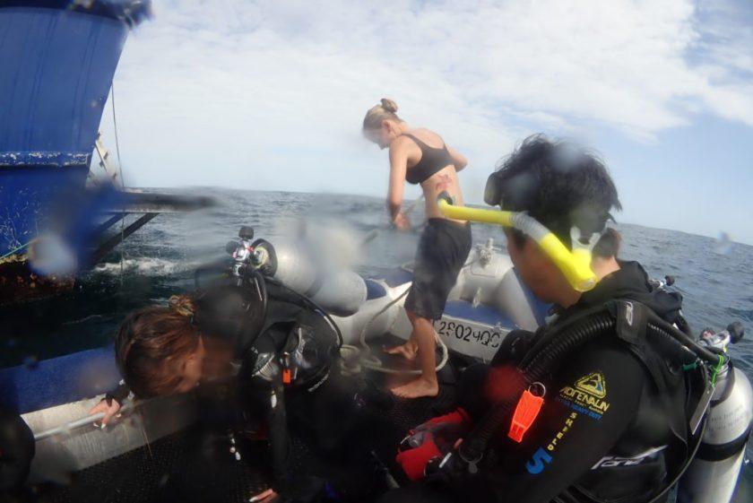 オーストラリア グレートバリアリーフ オーシャンクエスト テンダーでドロップオフ