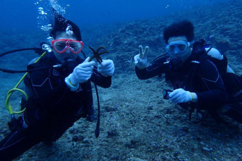 宮古島体験ダイビング・クロスホール
