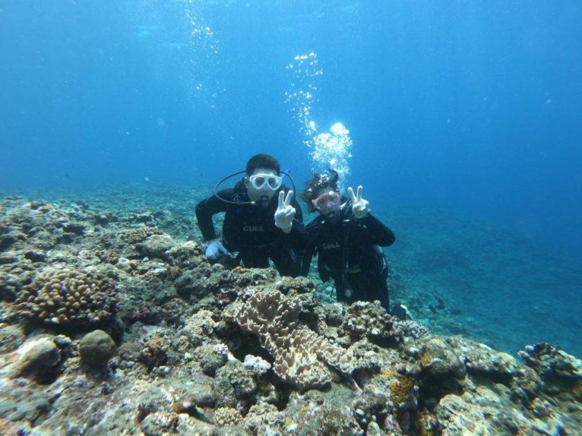 サンゴホールで体験ダイビング