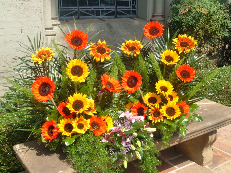 Three Bouquets, Two Sunflowers, One Lilies