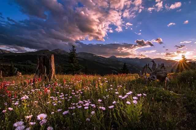 Rocky Mountain Summer Sunset