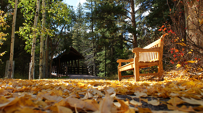 Vail Colorado Fall Day