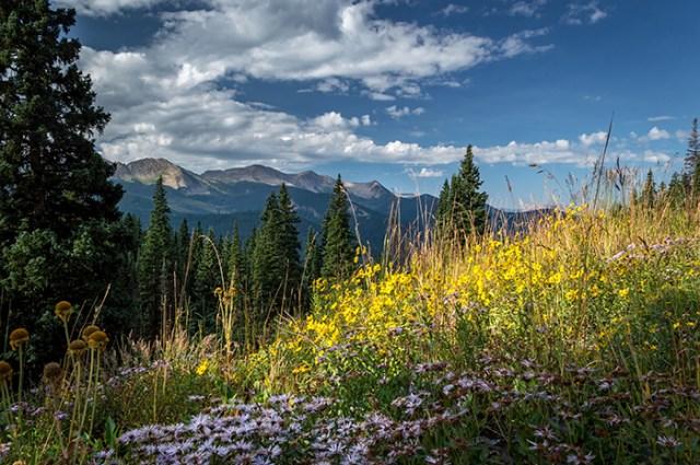 West Elk Mountain Range