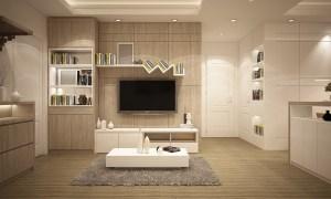 Elegant furniture in a clean living room