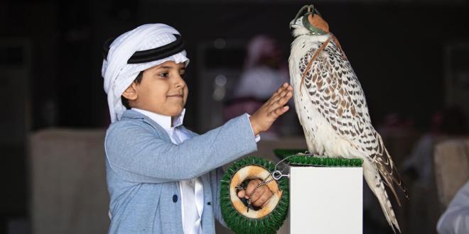 الأطفال يستثمرون نهاية الأسبوع لحضور سباقات مهرجان الملك عبدالعزيز للصقور