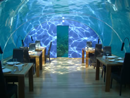 About Mike Murphy Underwater Restaurant Designer