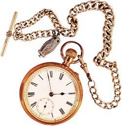 Einstein Watch