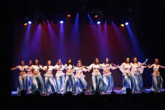 Gala-2013-Il-était-une-fois-le-royaume-magique-de-MK-Dance-Studio-Pontault-Combault-77-(5)