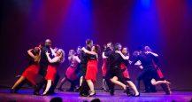 Gala-2015-Fée-Gaffe-Adulte---MK-Dance-Studio-Pontault-Combault-77-(2)