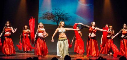Gala-2015-Fée-Gaffe-Adulte---MK-Dance-Studio-Pontault-Combault-77-(29)