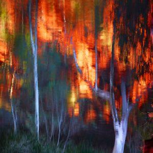 Mark Kelly - 'Paint I' - (98cm x 98cm)