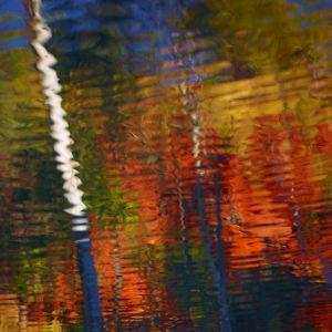 Mark Kelly - 'Paint II' - (98cm x 98cm)