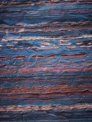 Mark Kelly - 'Under_The_Sea III' - (98cm x 78cm)
