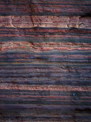 Mark Kelly - 'Under_The_Sea IV' - (98cm x 78cm)