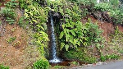 Petite cascade au cœur de l'île