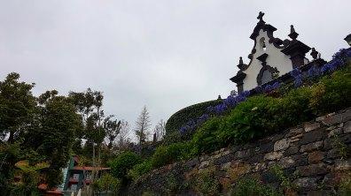 le jardin luxuriant de Monte