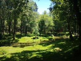 Parque de merendas de Lamas de Mouro
