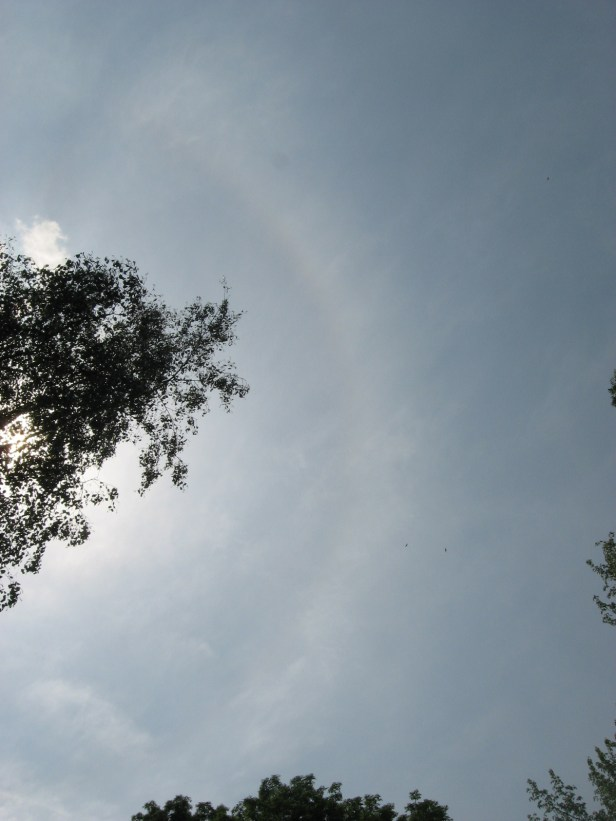 The halo seen on cirrostratus clouds