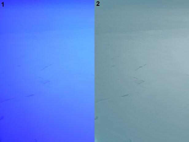 GIMP image processing ice sheet Greenland 1