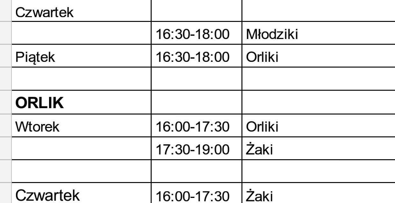 Plan treningów obowiązujący od 11.03. (do odwołania)