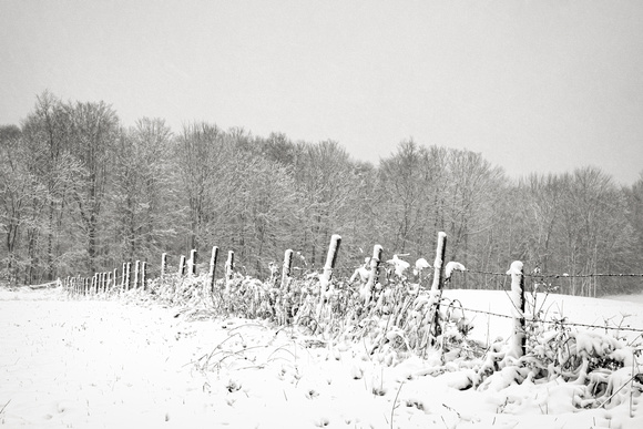 MLCreations Photography: Blog Post Related &emdash; First Snow 4